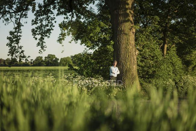 Бизнесмен, опираясь на дерево в дневное время — стоковое фото