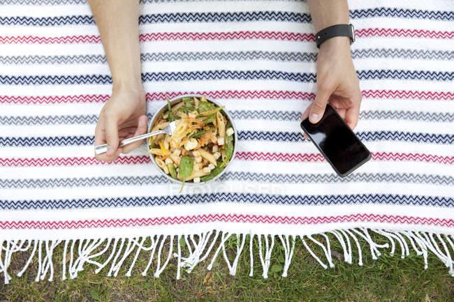 Uomo che mangia insalata di tagliatelle sulla coperta in un parco durante l'utilizzo del telefono cellulare, vista parziale — Foto stock