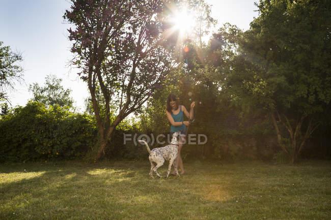 Chica enseñando dálmata en el jardín - foto de stock
