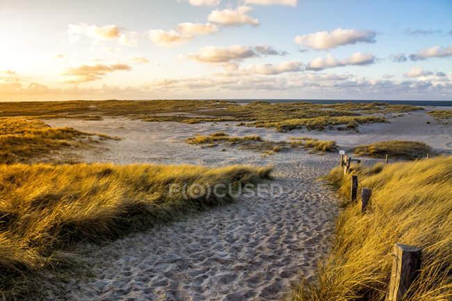 Deutschland, Schleswig-Holstein, Sylt, Wenningstedt bei Sonnenuntergang — Stockfoto