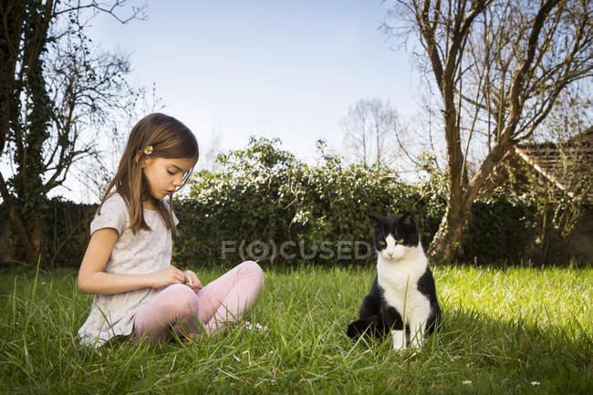 Маленька дівчинка сидить на лузі, крім котячого збирання ропух. — стокове фото