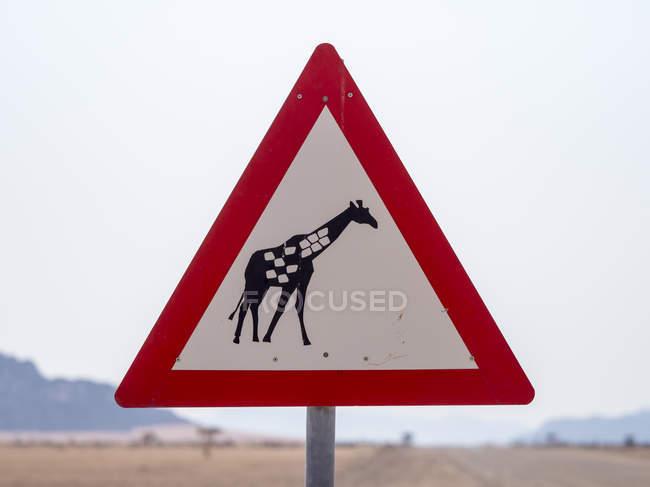 Африка, Намібія, знак руху з жирафа, етикетка обережності — стокове фото