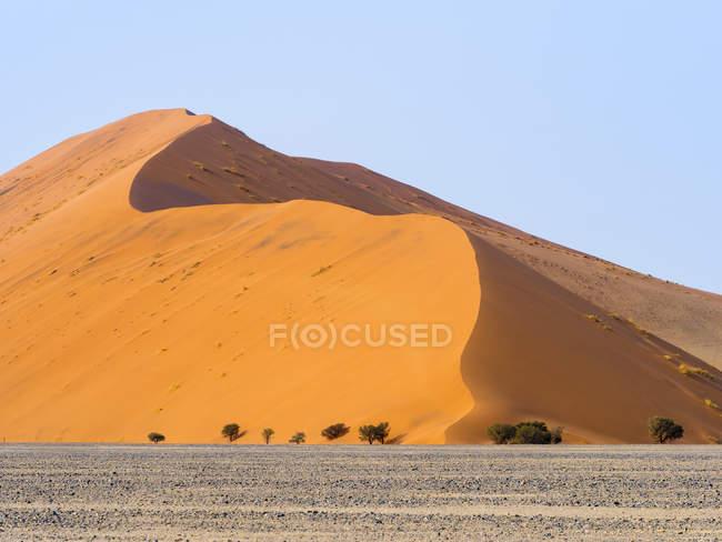 Africa Namibia Namib Desert Naukluft National Park