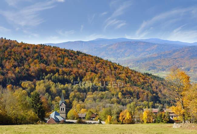 Германия, Бавария, Нижняя Бавария, Баварский лес, Лангфурт — стоковое фото