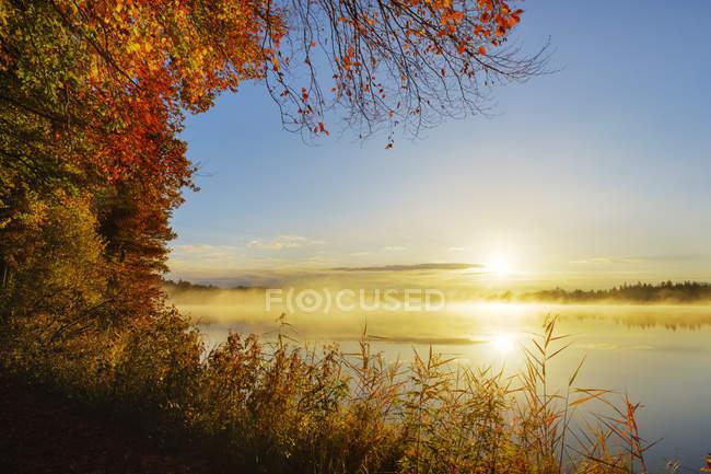Germany, Bavaria, Upper Bavaria, Toelzer Land, Lake Kirchsee at sunrise in autumn — Stock Photo