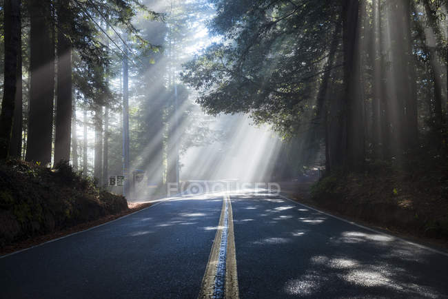 USA, Kalifornien, Highway 1, Sonnenstrahlen — Stockfoto