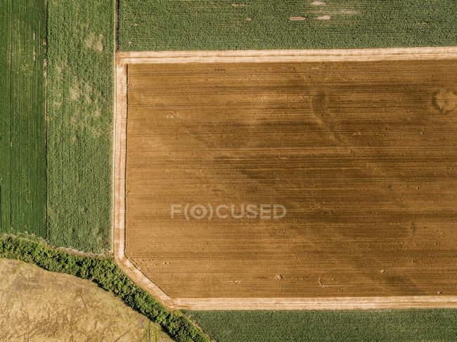 Serbia, Vojvodina, campi agricoli, vista aerea nella stagione estiva — Foto stock