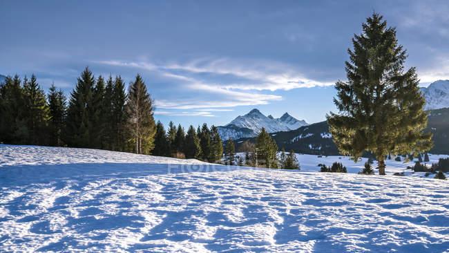 Allemagne, Bavière, Haute-Bavière, Garmisch-Partenkirchen, Werdenfelser Land, hump-meadow en hiver — Photo de stock