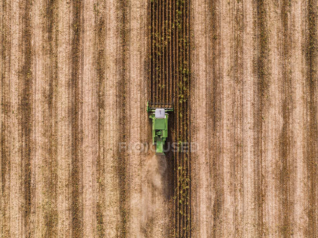 Serbia, Vojvodina, Combine harvester on a wheat, aerial view — Stock Photo