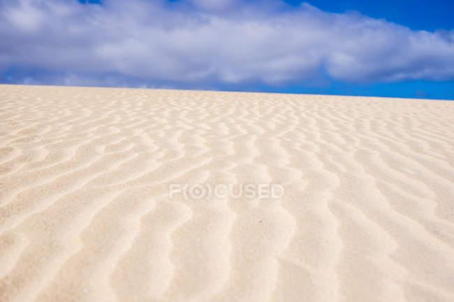 Spain, Canary Islands, Fuerteventura, dune — стоковое фото