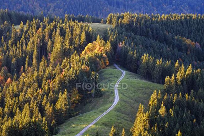 Germany, Bavaria, Upper Bavaria, Isarwinkel, View from Zwiesel near Wackersberg, pasture way — стоковое фото