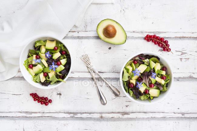 Смешанный салат с авокадо, красной смородиной и цветками огурцов — стоковое фото