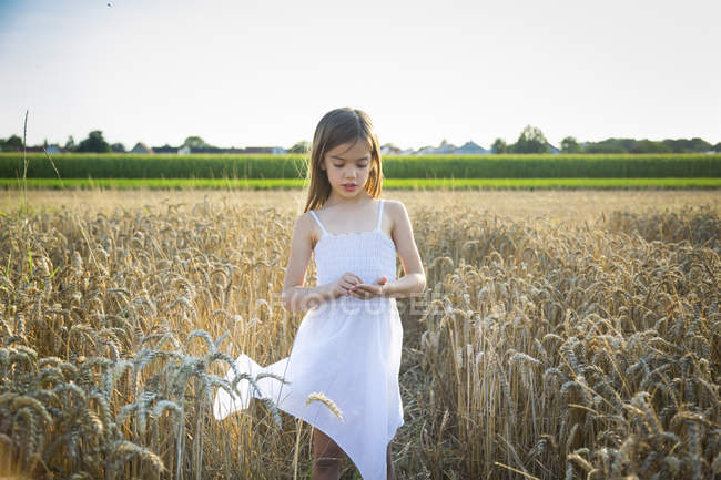 Portrait of little girl standing in wheat field — Stock Photo