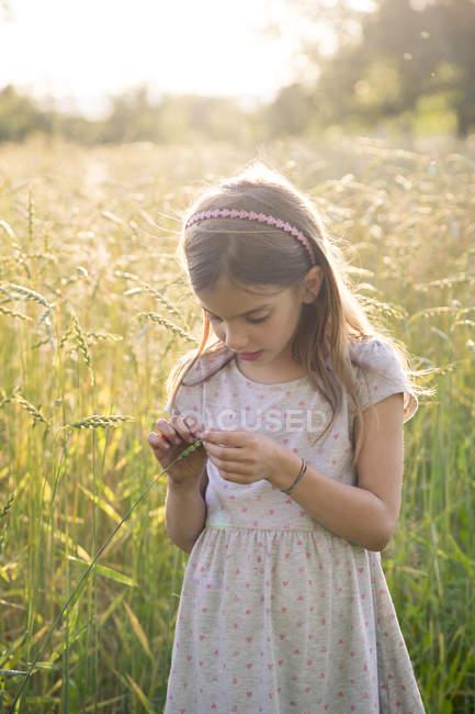 Jeune fille debout dans le champ le soir d'été — Photo de stock