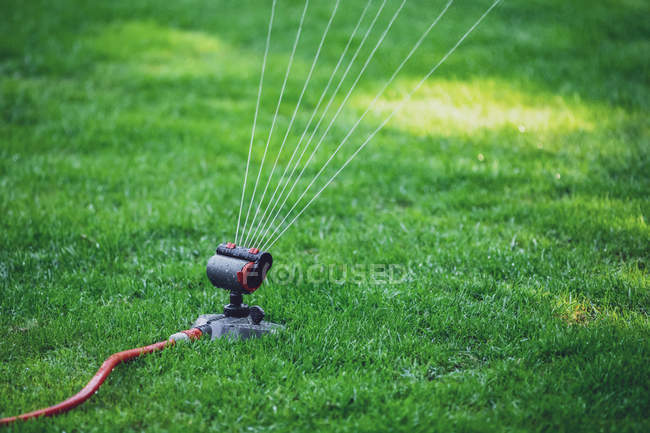 Close Up Of Lawn Sprinkler On Lawn Copy Space Water Jet