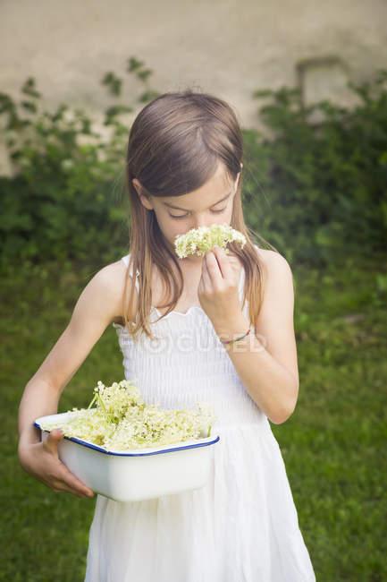 Дівчинка з тарілками вибраних квіток пахне цвітом. — стокове фото