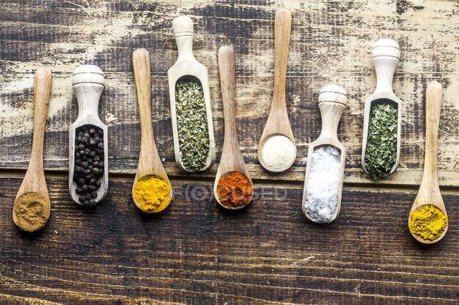 Gewürze, Curry, Chili, Zimt, Curcuma, Knoblauch, Petersilie, Oregano, Salz und Pfeffer auf Holzlöffeln — Stockfoto