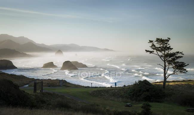 USA, Oregon, Cannon Beach at sunrise — Stock Photo