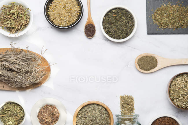 Various herbal infusions, chamimile, mint, rooibos, thyme, green tea, tisane — Stock Photo