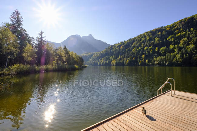 Alemania, Baviera, Allgaeu, Schwansee cerca de Schwangau - foto de stock