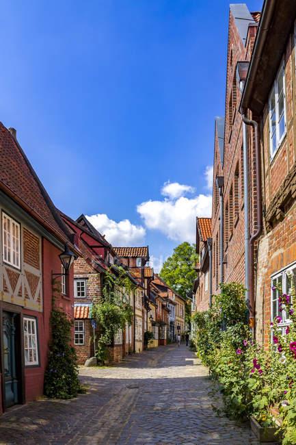 Deutschland, niedersachsen, lüneburg, altstadt, allee — Stockfoto