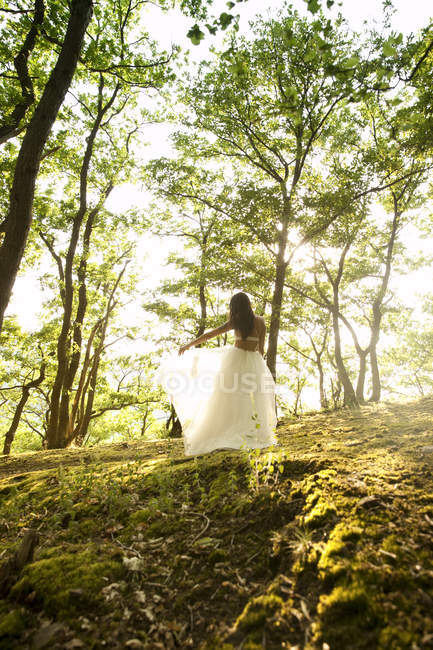 Rear view of young woman in forest wearing tulle skirt — Stock Photo