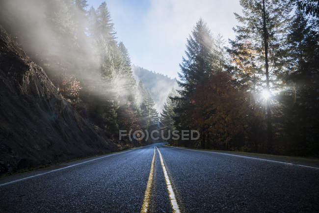 USA, Oregon, Contea di Klamath, strada nel Crater Lake National Park — Foto stock