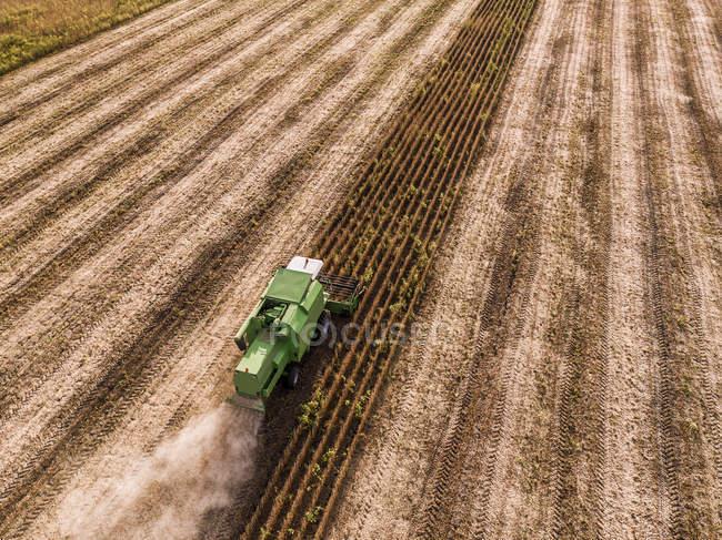 Serbia, Vojvodina, mietitrebbia su grano, vista aerea — Foto stock
