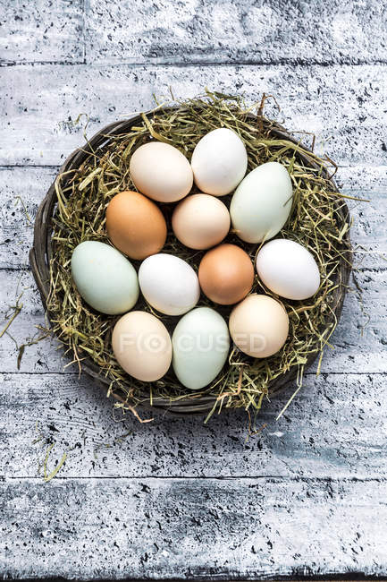 Различные яйца, белые, коричневые, светло-коричневые и зеленые яйца — стоковое фото