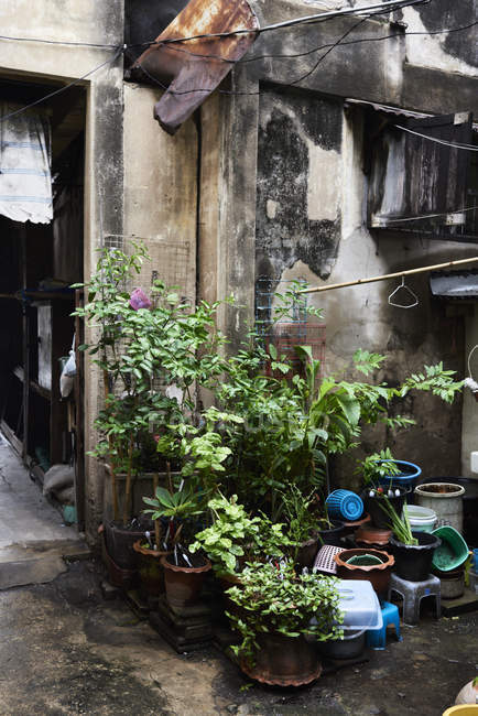 Thailand, Bangkok, Pflanzen und Schrott vor einem heruntergekommenen Haus — Stockfoto