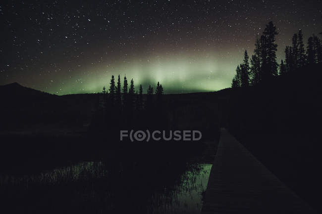 Kanada, British Columbia, Liard River Hot Springs Provincial Park, Northern Lights, Sternenhimmel bei Nacht — Stockfoto