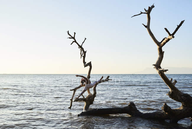 Young woman practicing yoga on a fallen tree in the sea — Stock Photo