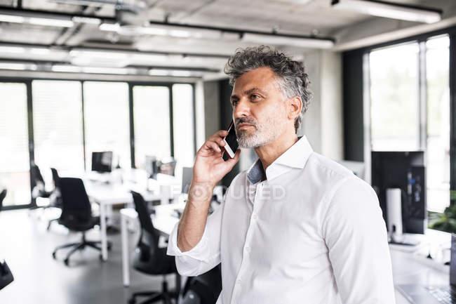 Homem de negócios maduro falando no celular no escritório — Fotografia de Stock
