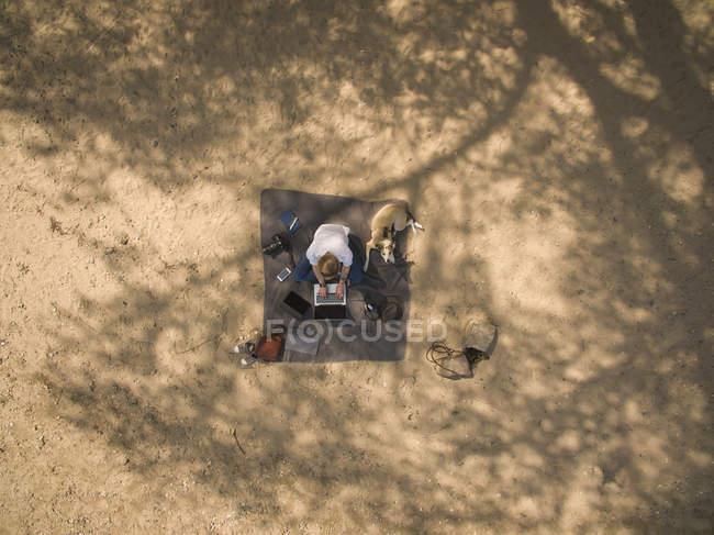 Пташиний погляд на жінку, що сидить на ковдрі з собакою за допомогою ноутбука. — стокове фото