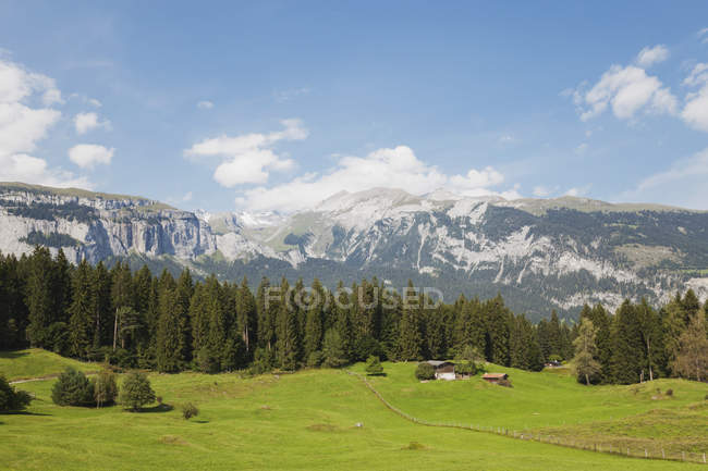 Switzerland, Grisons, Grison Alps, alpine meadows and view of Alps at Flims region — Stock Photo