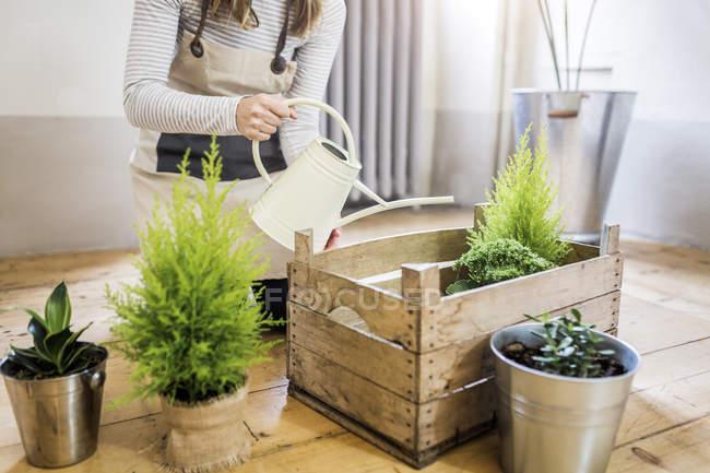 Nahaufnahme der Frau zu Hause Bewässerungsanlagen — Stockfoto