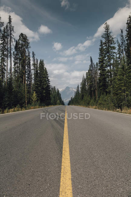 Canada, British Columbia, Trans-Canada Highway, Columbia-Shuswap road — Stock Photo