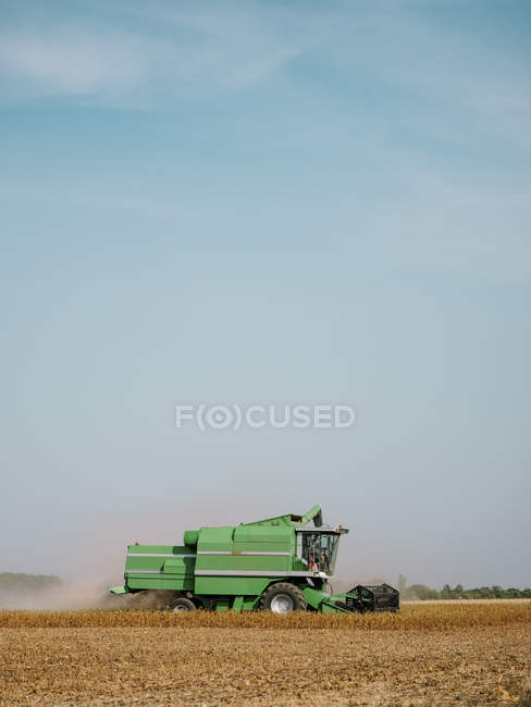 Сербия, Воеводина, Комбайн на соевом поле — стоковое фото