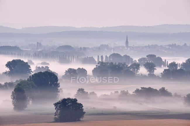 Allemagne, Baden-Wuerttemberg, quartier de Constance, Radolfzell, vue sur Radolfzeller Aach le matin avec brouillard — Photo de stock