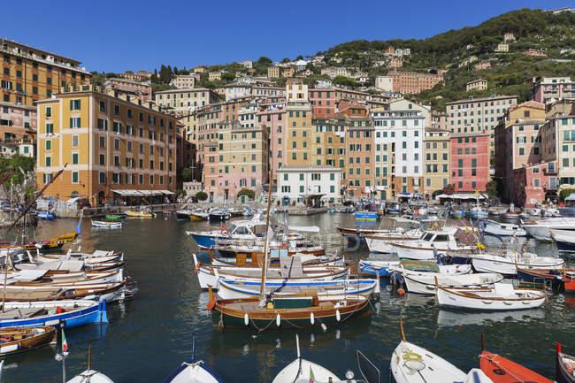 Italien, ligurien, camogli, hafen mit booten — Stockfoto