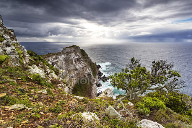Africa, South Africa, Western Cape, Cape Town, Cape of good hope National Park, Cape Point - foto de stock