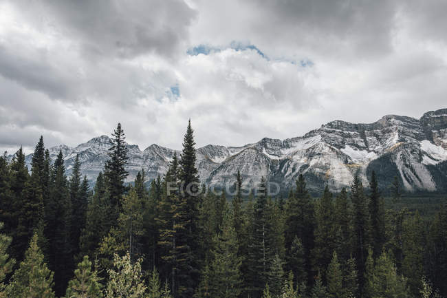 Canada, Alberta, Banff National Park, Valley of the Ten Peaks, Rocky Mountains — Stock Photo