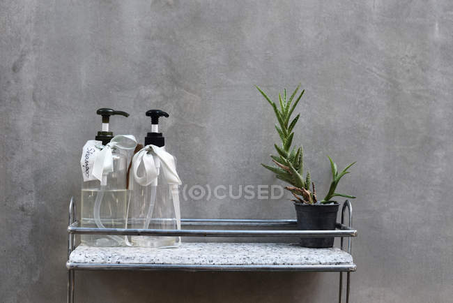 Home decor with cactus plant dispensers in bath — Stock Photo