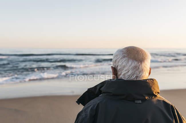 Senior man standing on beach, back view — Stock Photo