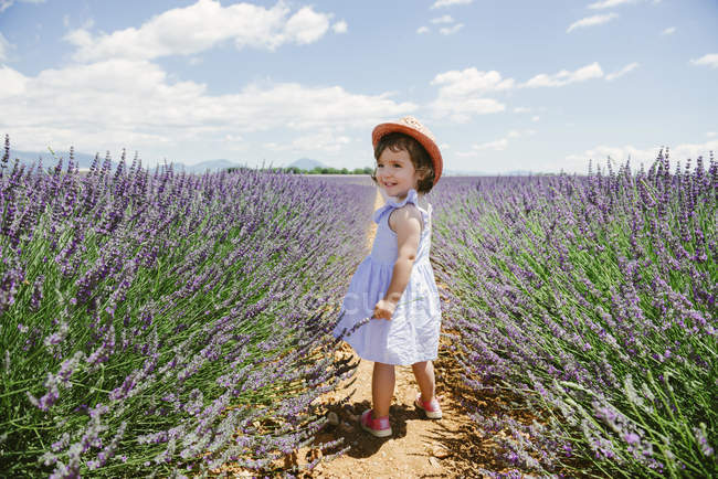 France, Provence, Valensole plateau, Happy toddler girl standing in purple lavender fields in the summer — Stockfoto