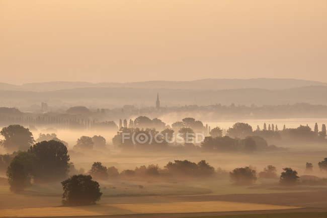 Germania, Baden-Wuerttemberg, distretto di Constance, Radolfzell, vista su Radolfzeller Aach al mattino con nebbia — Foto stock