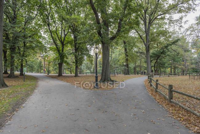 Usa, New York City, Manhattan, Central Park à la journée — Photo de stock