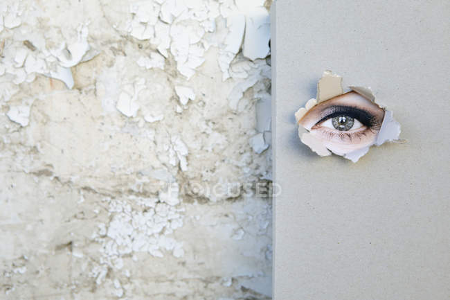 Book with eye looking through the cover  leaning against weathered wall — Stock Photo