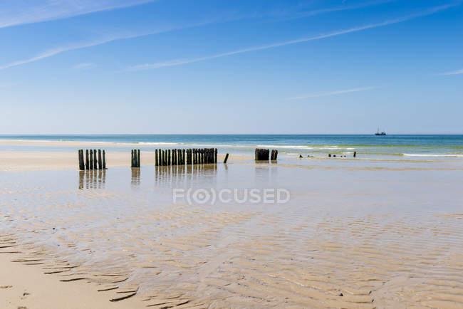 Brise-lames de Sylt, en mer du Nord, Allemagne, Schleswig-Holstein, — Photo de stock