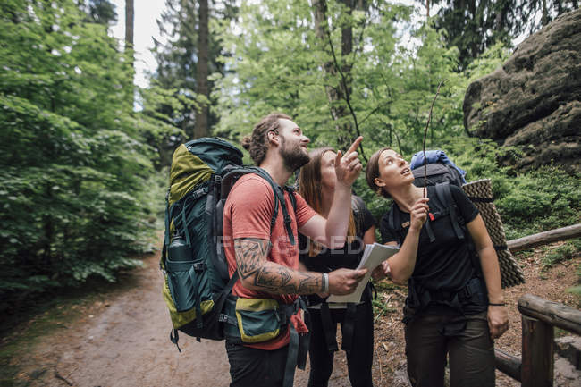 Friends on a hiking trip looking up — Stock Photo